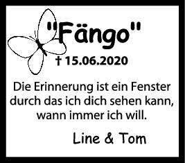 Trauer Fängo <br><p style=