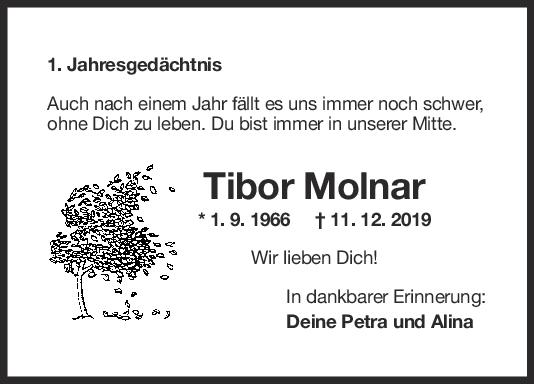 Nachruf Tibor Molnar <br><p style=