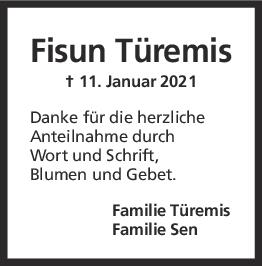 Dankasgung Fisun Türemis <br><p style=